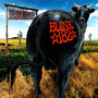 blink 182 – Dude Ranch
