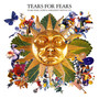 Tears for Fears – Tears Roll Down (Greatest Hits