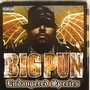 Big Pun &ndash; Endangered species