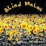 Blind Melon – Frosting A Cake