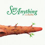 Say Anything – Was A Real Boy