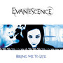 Evanescence &ndash; bring me to life
