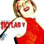Rogério Skylab – Skylab V