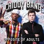 Chiddy Bang – Opposite Of Adults