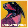 Iron And Wine The Shepherd's Dog