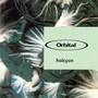 Orbital Halcyon CDM