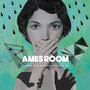 Supreme Team – Ames Room