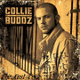 Collie Buddz – The Last Toke