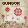 Michael Gungor Band – Beautiful Things