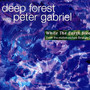 Deep Forest With Peter Gabriel – While the Earth Sleeps