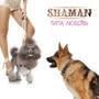 Shaman – Типа любовь