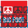 Chickenfoot – Big Foot - Single