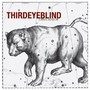 Third Eye Blind – Ursa Major (Bonus Track Version)