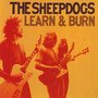The Sheepdogs – Learn and Burn