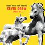 Broken Social Scene Presents Kevin Drew – Spirit If...