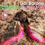 Gai Barone – The Moth