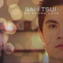 Sam Tsui – We Found Love - Single