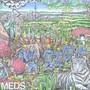 Mt Eden – Meds