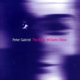 Peter Gabriel The Barry Williams Show