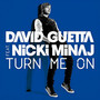 David Guetta Turn Me On