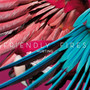 Friendly Fires &ndash; Hurting