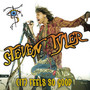 Steven Tyler – (It) Feels So Good