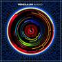 Pendulum – In Silico
