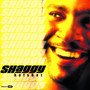 Shaggy – Hot Shot
