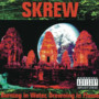 Skrew – Burning In Water, Drowning In Flames