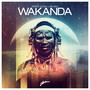 Dimitri Vegas & Like Mike – Wakanda - Single