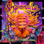 Shpongle – Museums Of Consciousness
