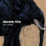 Damien Rice – Cannonball