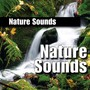 Nature Sounds – Nature Sound