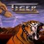 Tiger – tiger