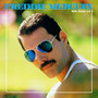 freddie mercury – Mr Bad Guy