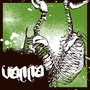 Vanna – The Search Party Never Came