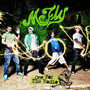 McFly One For The Radio