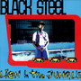 Black Steel – Lion In The Jungle