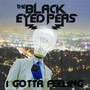 The Black Eyed Peas I Gotta Feeling