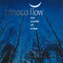Orinoco Flow: The Music of Enya (The Taliesin Orchestra feat