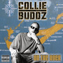 Collie Buddz – On The Rock