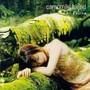 Emi Fujita – camomile blend