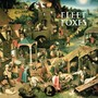 Fleet Foxes – Ragged Wood