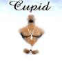 Cupid Cupid