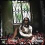 Lil' Jon – Crunk Rock Continues