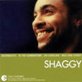 Shaggy – The Essential