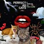 Kaki King – Perfect As Cats: A Tribute To The Cure