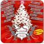 Lucero – Navidad Con Amigos 2006