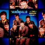 Animals – The Singles Plus