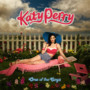 Katty Perry – One of The Boys